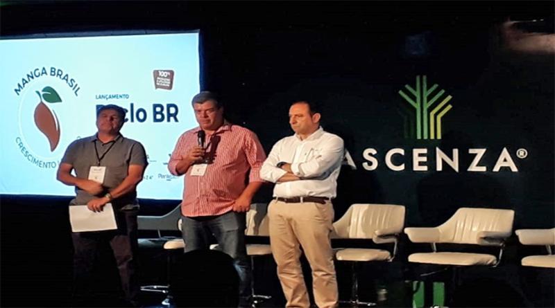 Novo regulador de crescimento para manga muda cenário de produção no Vale do São Francisco